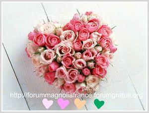rose_r12[1]
