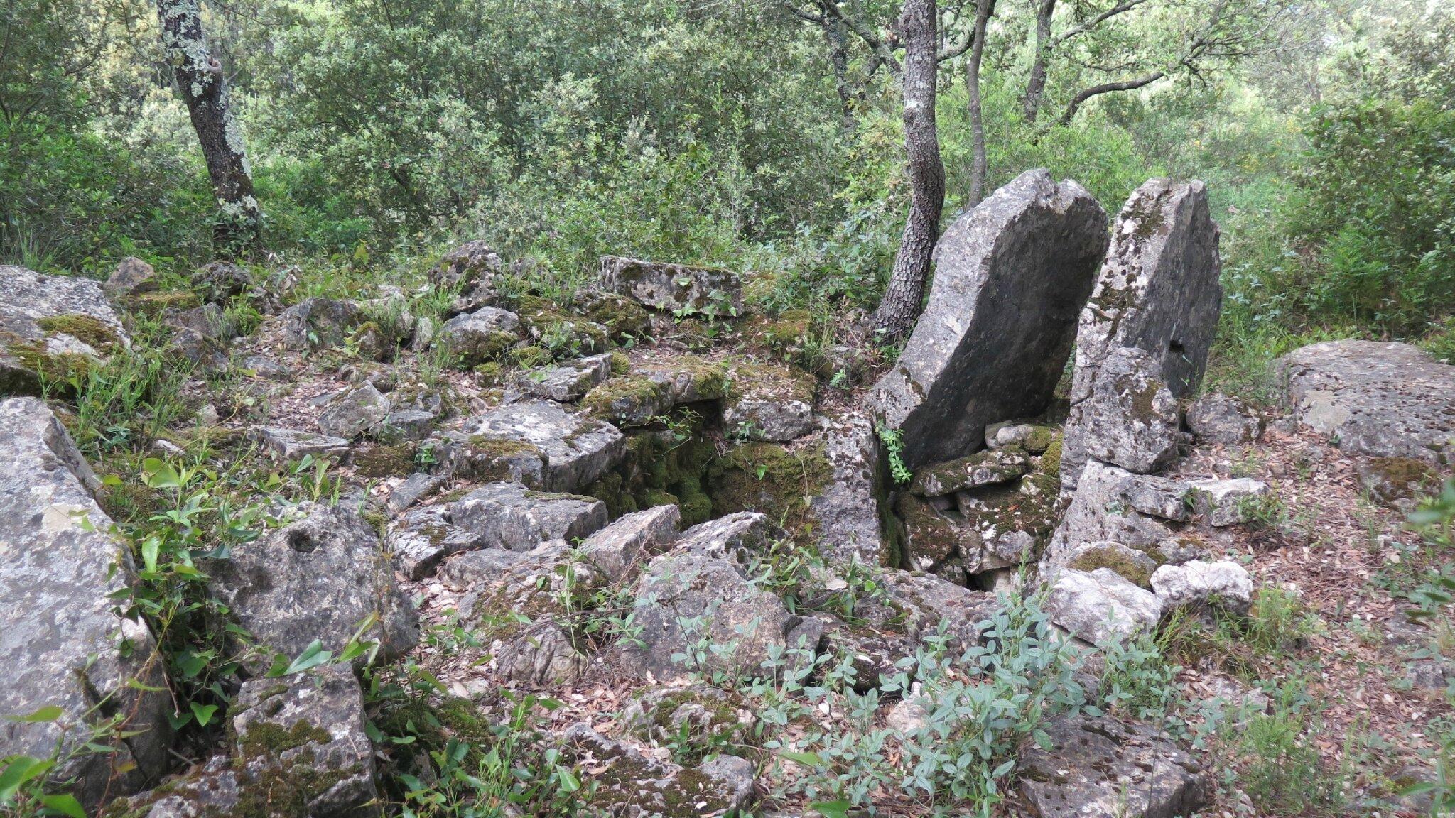 Dolmen Roque d'Aille (7)