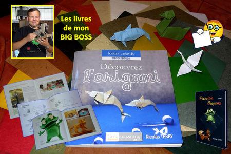 livre_origami