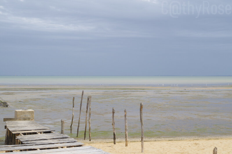 && plage Fort Royer (11)