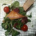 Brick chèvre pommes accompagné de son foie gras et son vinaigre de framboise