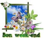 bon week-end papillon