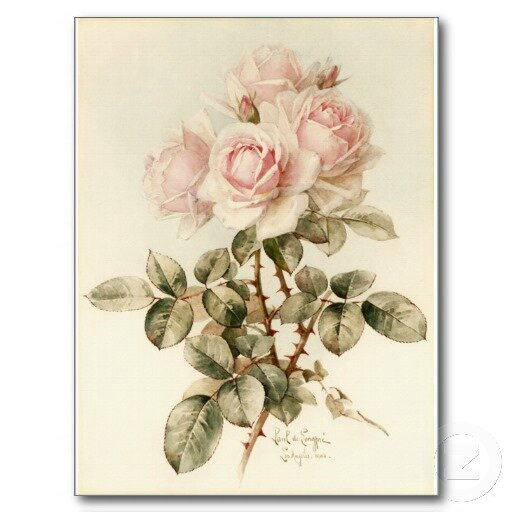 vintage_victorian_romantic_roses_post_cards-ra52a9f4e51494a50bf0736ee5c854571_vgbaq_8byvr_512