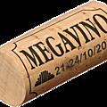 Megavino 2011 à bruxelles