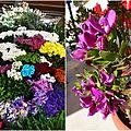 Au marché aux fleurs en espagne