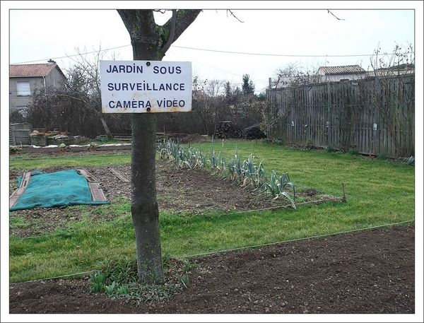 jardin video
