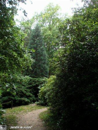 27_chemin_arboretum