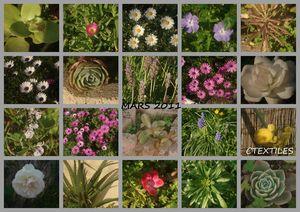 jardin_mars2011