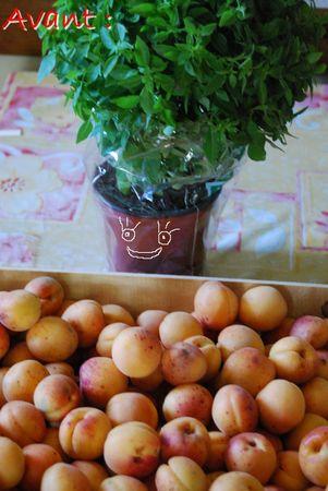 confiture_abricots_basilic