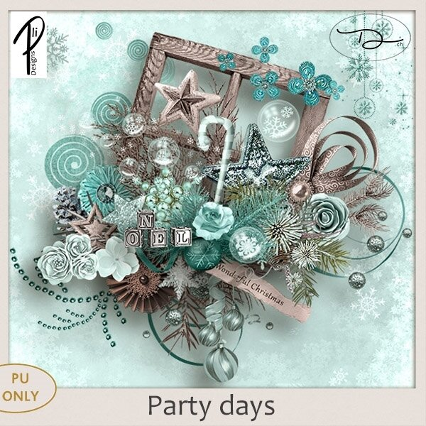 plidesigns_partydays_pvch-536a03f