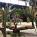 BOUQUET des Floralies2