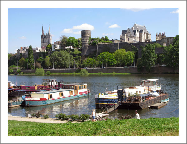 Angers_32_w