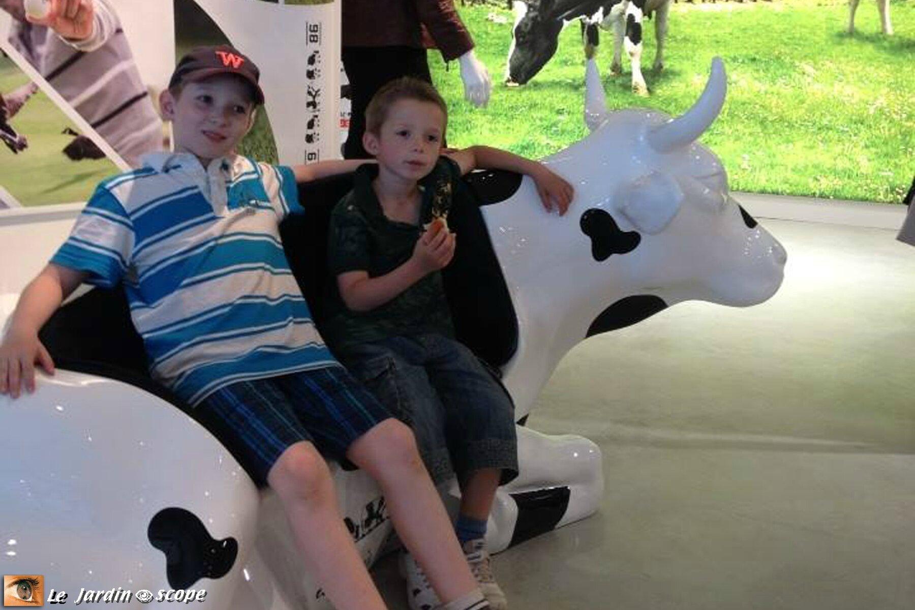 Banc...vache, difficile à placer quand même !