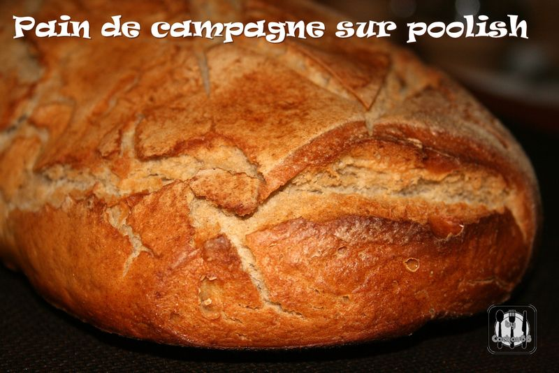 PAIN SUR POOLISH (3)
