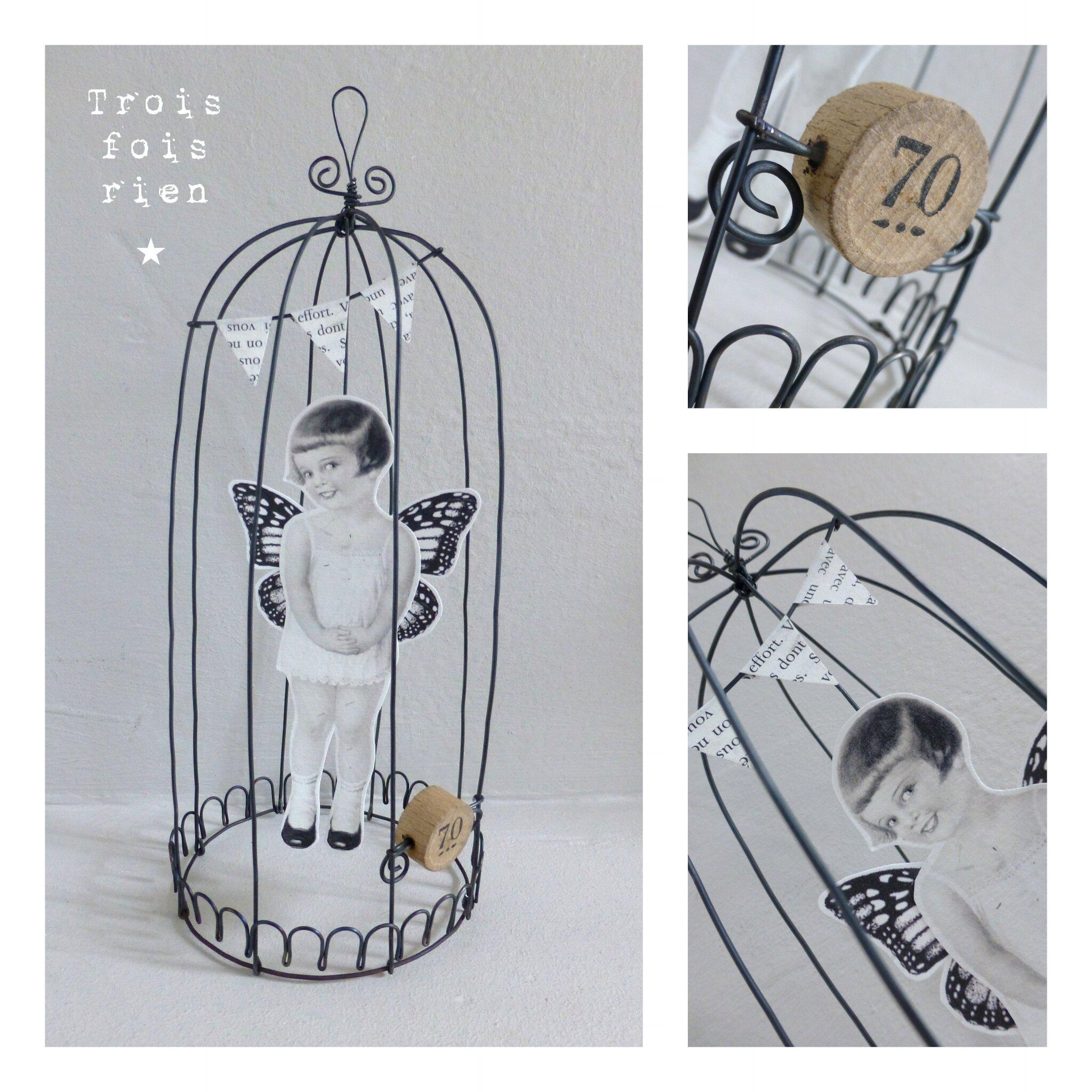 Cages fil de fer et papier 22