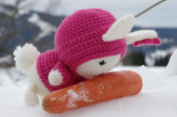 Bunny in the Snow (7)