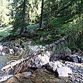 Commune : colmars les alpes cours d'eau : la lance (lc1)