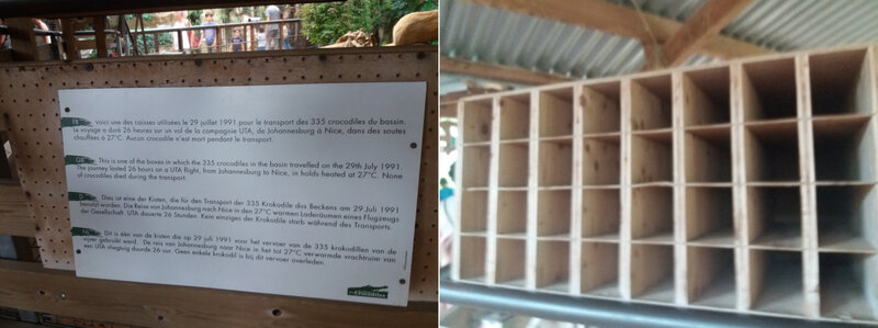La ferme aux crocodiles (33)