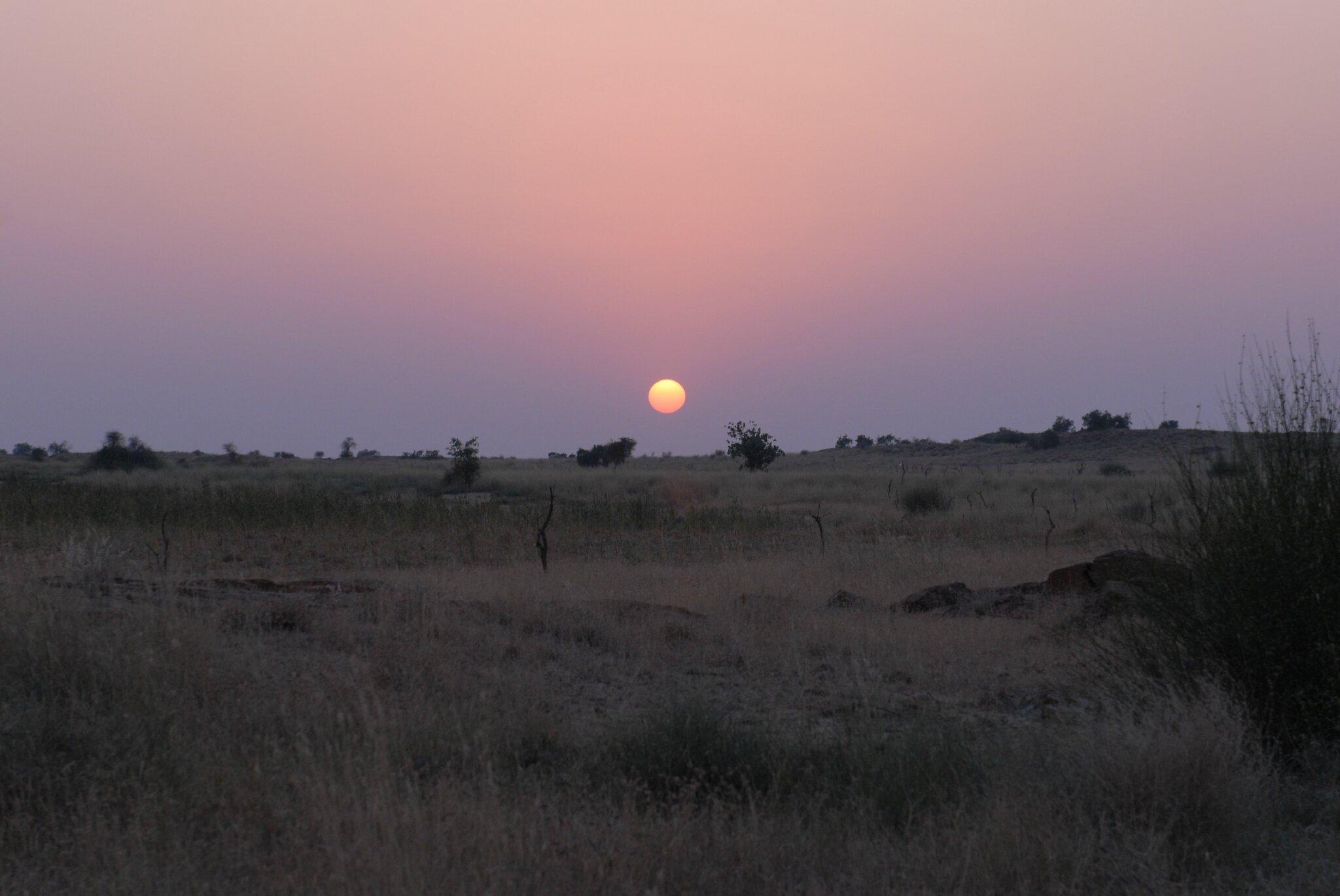 coucher de soleil dans le desert du thar
