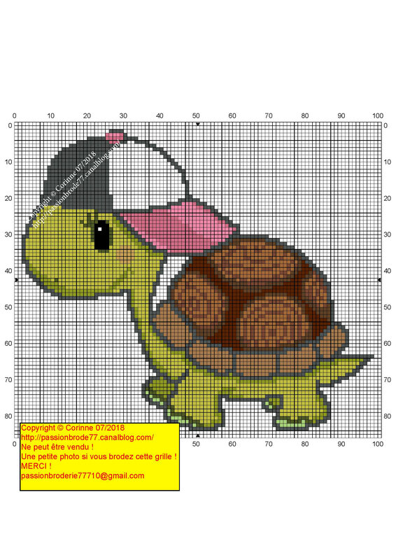 Tortue Casquette_Page_1