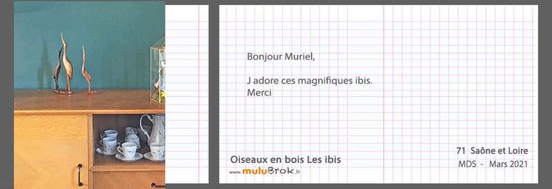 21-3-OISEAUX-bois-muluBrok