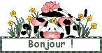 bonjoour3