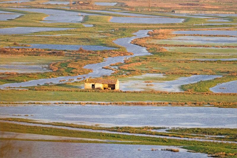 Tour de Broue 200221 2 paysage marais fermette soleil levant ym