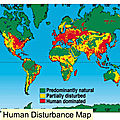 Human Disturbance Map