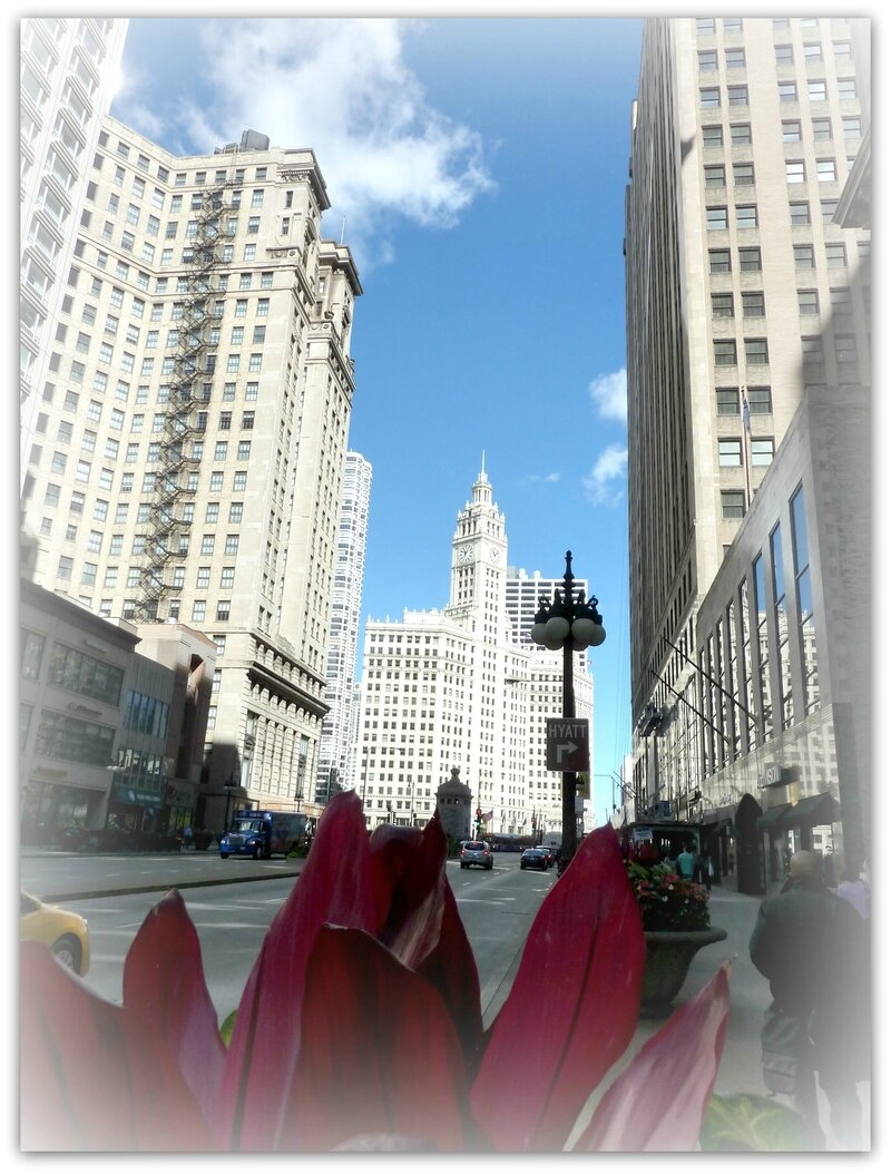 Michigan Avenue 1