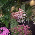Floralies 067