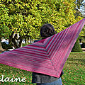 Mon grain shawl by tin can knits