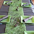 Vert anis et chocolat 2011