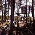 cube miroir supsendu dans la forêt