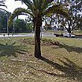 Rond-point à germiston (afrique-du-sud)