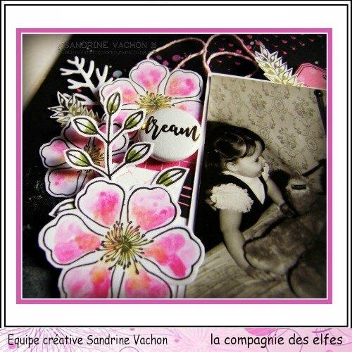 Sandrine VACHON page AMIS dt LCDE déc (4)