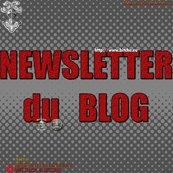 - NEWSLETTER du BLOG