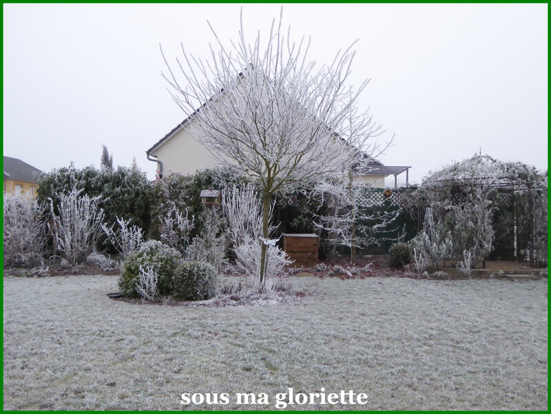 givre