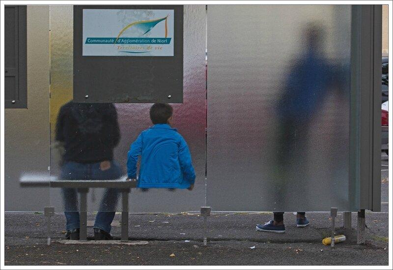 ville abri bus enfant tronc 07092013