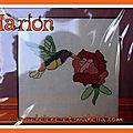 Le colibri de marion, 17e inscrite