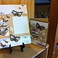 Page et carte d'anniversaire papillons
