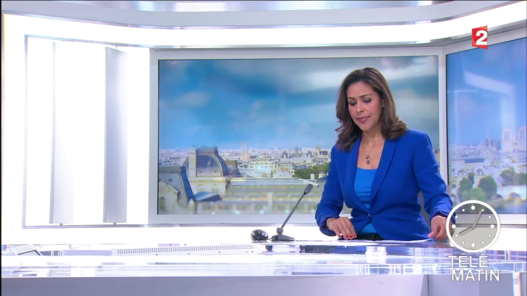 sophiegastrin03.2015_04_06_telematinFRANCE2