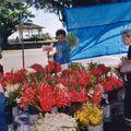 marché d'hilo_06