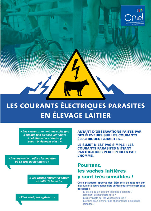 BF_42_-_Page_13_Courants_parasites