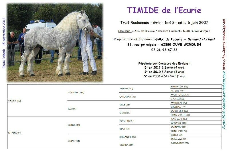 Fiche TIMIDE DE L'ECURIE 2014