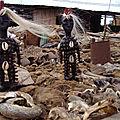 marabout medium voyant africain du retour affectif rapide en 24 heures