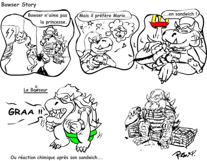 Bowser story
