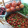 tomates, haricots, mures et framboises, fraises www.passionpotager.canalblog.com