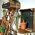 caisse en bois plantes