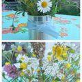 # fleurs sauvages #