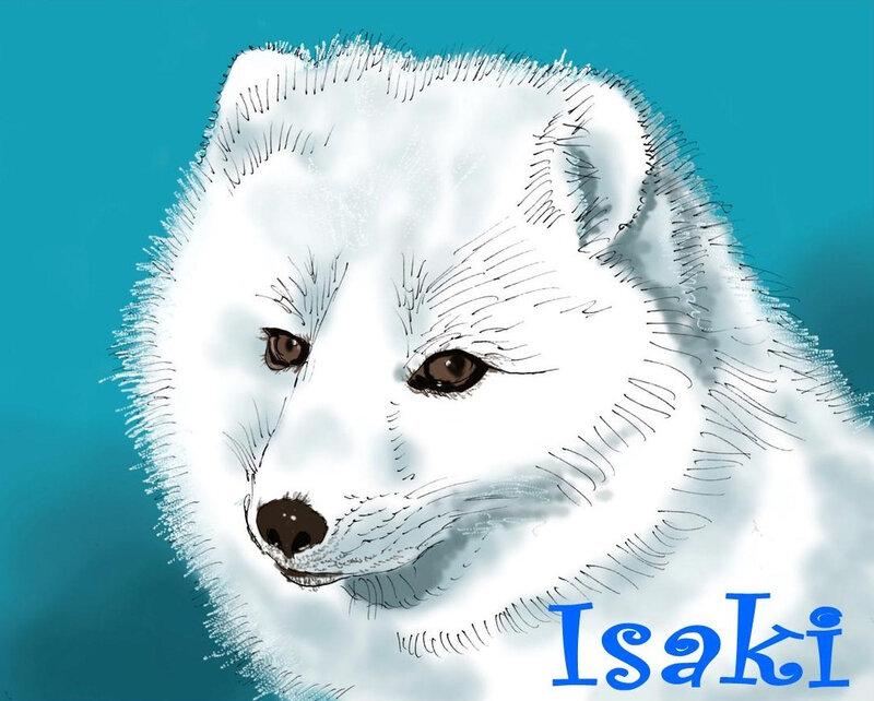 Isaki - Isabelle
